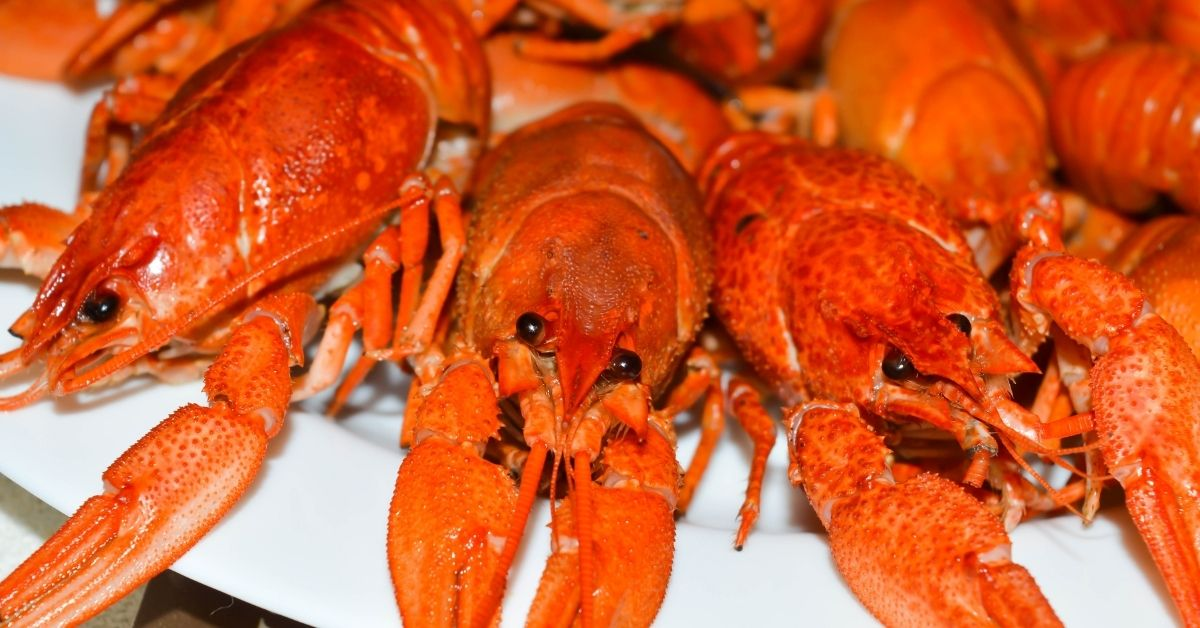 How To Cook Crabs Recipe